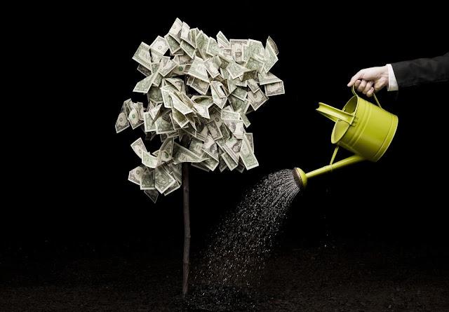 Инвестиционные платформы, которые реально платят