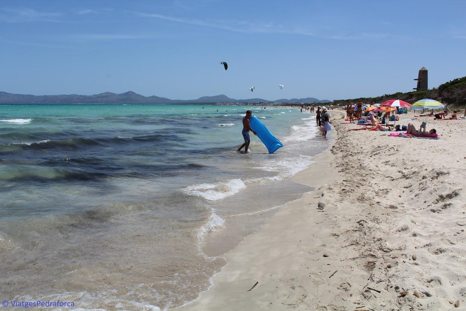 les millors platges de Mallorca, Illes Balears, Parc natural de s'Albufera de Mallorca