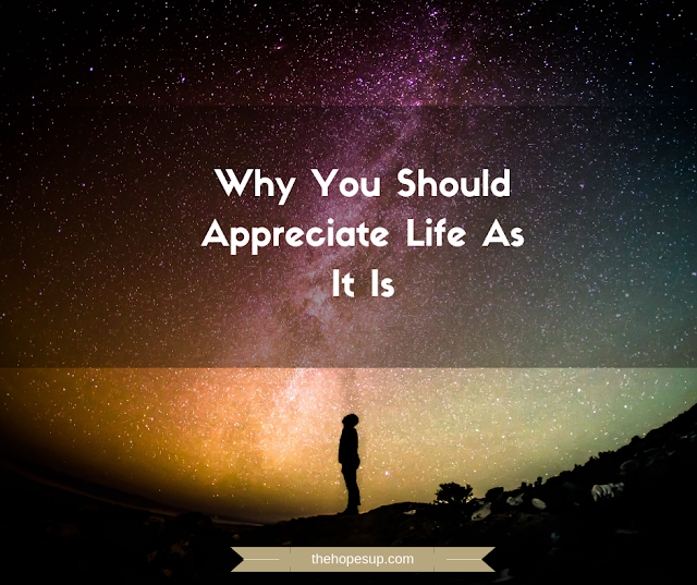 Why You Should Appreciate Life As It Is