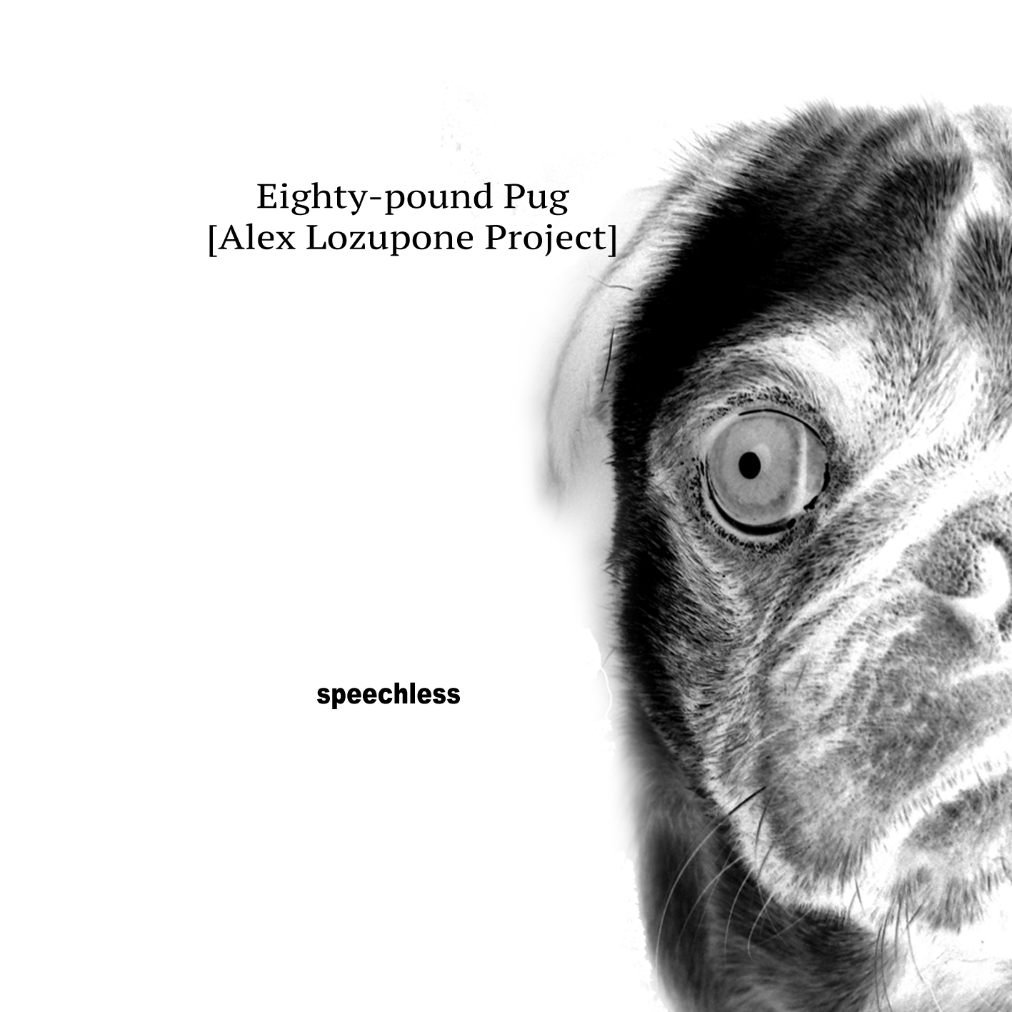 Gapplegate Guitar And Bass Blog Eighty Pound Pug Speechless Alex