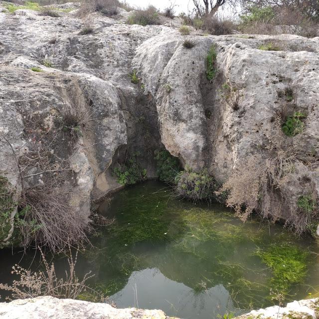 מקווה מים בסלע