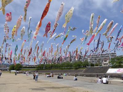 【大阪府高槻市】芥川桜堤公園の上空を泳ぐ約1000匹のこいのぼり