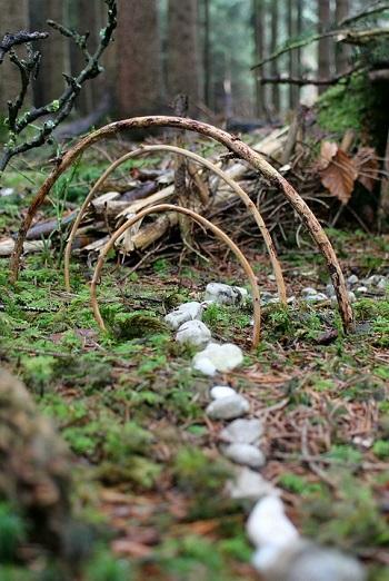 Harmonie chamanisme chemin pierre foret nature