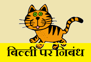 Short essay on Cat in Hindi