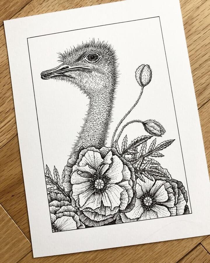 12-The-ostrich-flowers-Diane-Swartzberg-www-designstack-co