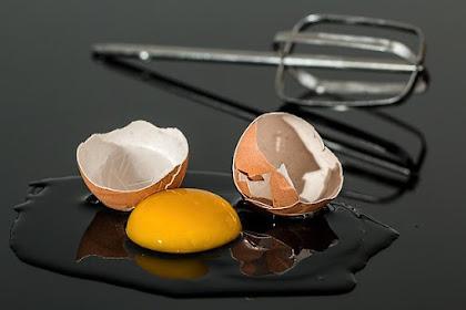Berbahayakah Mengkonsumsi Kuning Telur | Manfaat Kesehatan Mengkonsumsi Kuning Telur