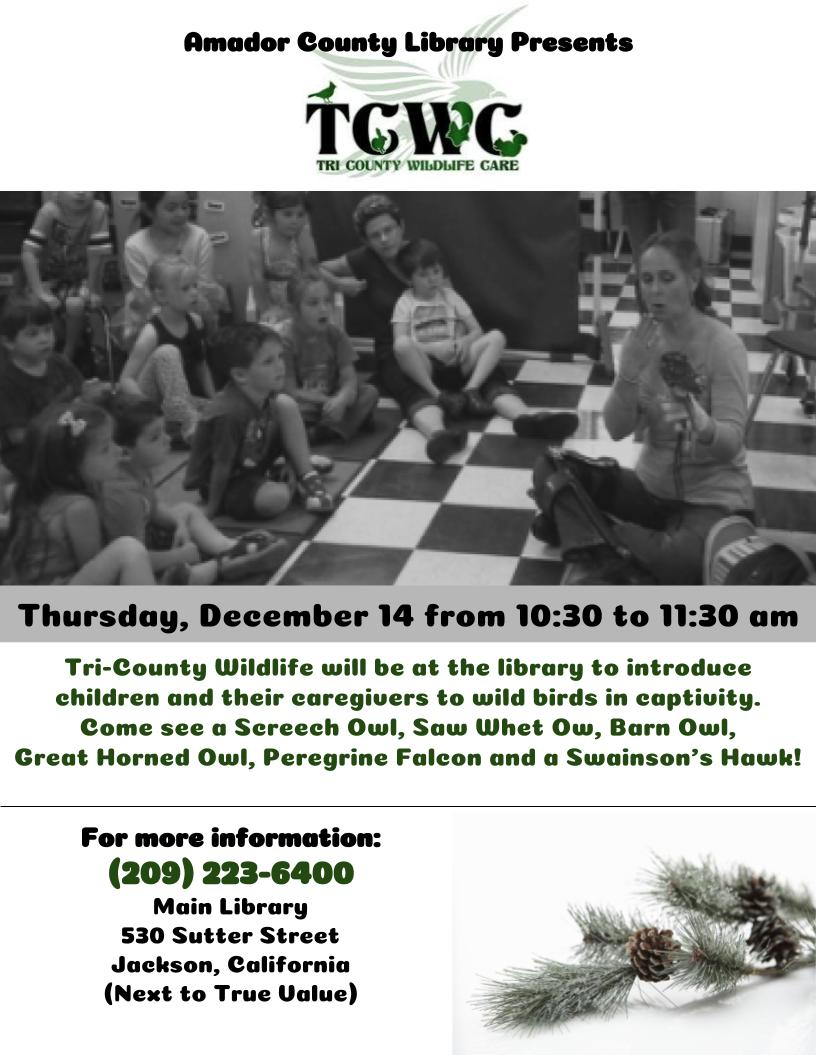 Amador County Library Presents: Tri-County Wildlife Care - Thurs Dec 14