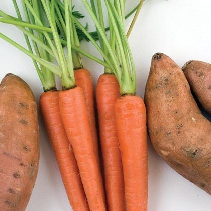 Orange Puree Recipe