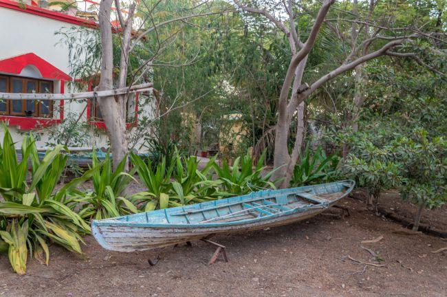 a canoe in the garden