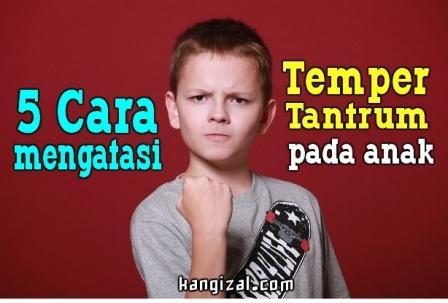 Apa itu temper tantrum? Temper tantrum adalah perilaku marah anak yang ditampilkan karena keinginannya tidak dapat terpenuhi, seperti menangis dengan keras, guling-guling di lantai, bahkan sampai melemparkan barang-barang. Biasanya perilaku tersebut akan dipertahankan sampai keinginannya terpenuhi.