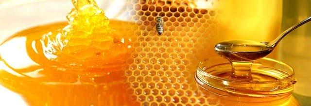Tác dụng của mật ong - mua mật ong ở đâu?