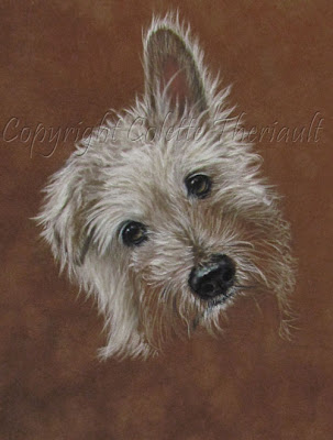 Terrier Dog Portrait Commission Painting by Animal Portraitist Colette Theriault