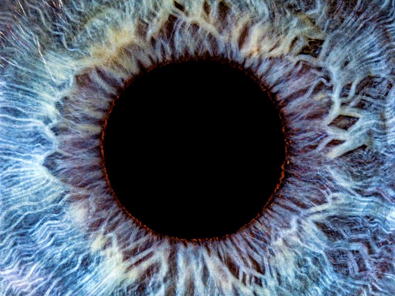 Iris Eye Hd In blue ey...