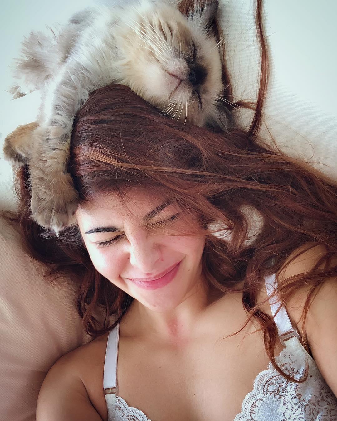 Jacqueline Fernandez with cat pic