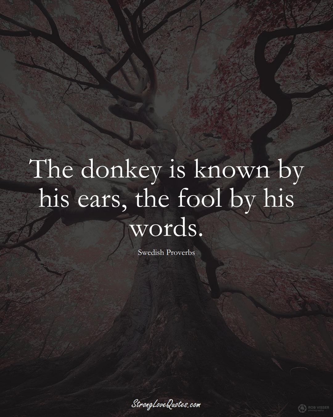 The donkey is known by his ears, the fool by his words. (Swedish Sayings);  #EuropeanSayings