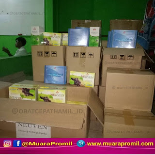 Agen Resmi Herbal Bee
