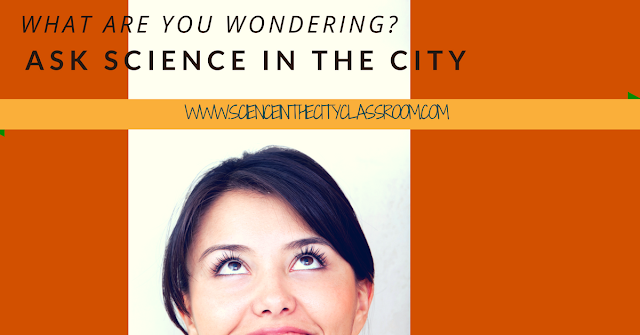 A chance for Q&A and background info about Science in the City~