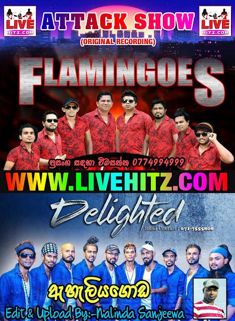 AHUNGALLA FLAMINGOES VS DELIGHTED ATTACK SHOW LIVE IN EHELIYAGODA 2020-01-26