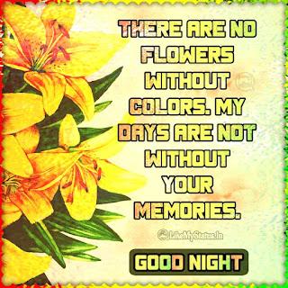 Love good night quote