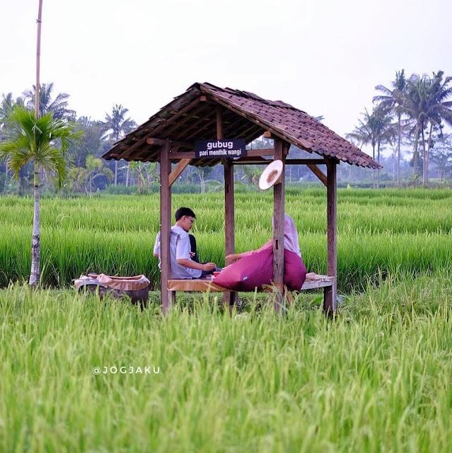 Kopi Padasan Sleman Yogyakarta