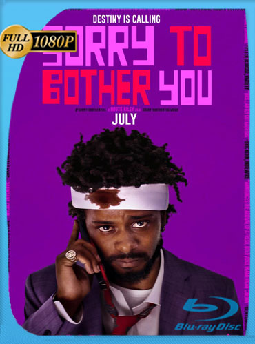 Sorry to Bother You (2018) HD 1080p Latino Dual [GoogleDrive] TeslavoHD