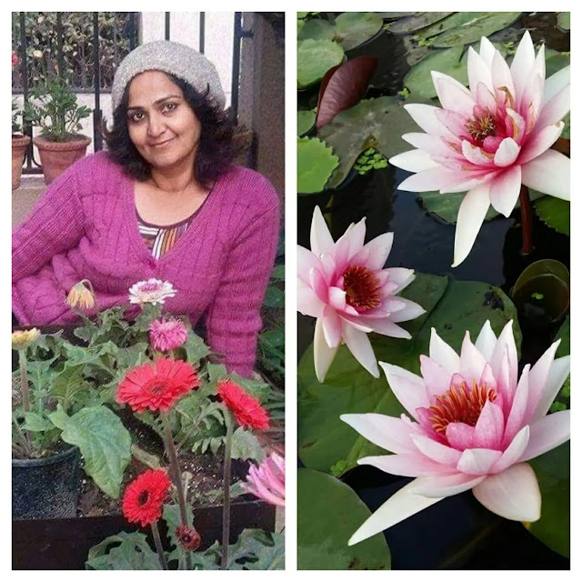 Learn to grow waterlilies from nilima