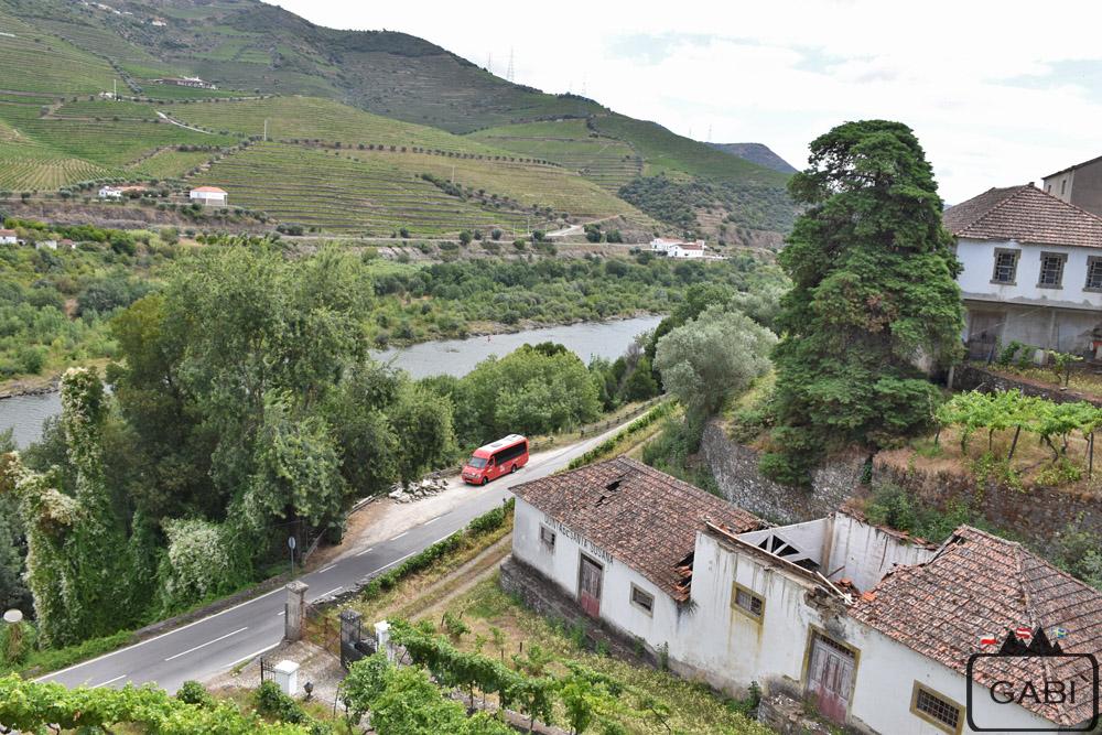 Portugalia, Alto Douro, winnice