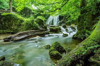 clear river stream