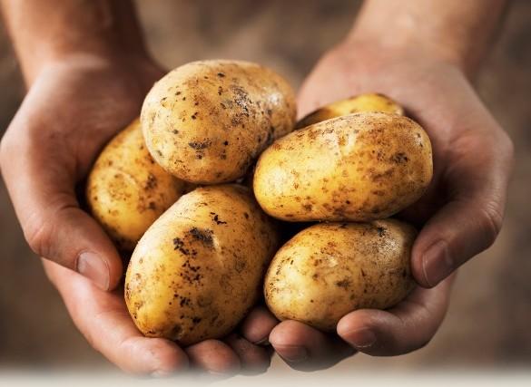 """""""6η Γιορτή πατάτας"""" στα Δίδυμα Αργολίδας"""