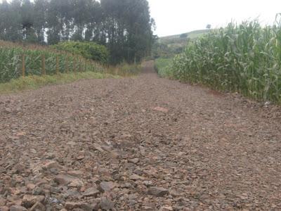 Borrazópolis-Agricultores pedem melhoria nas estradas rurais
