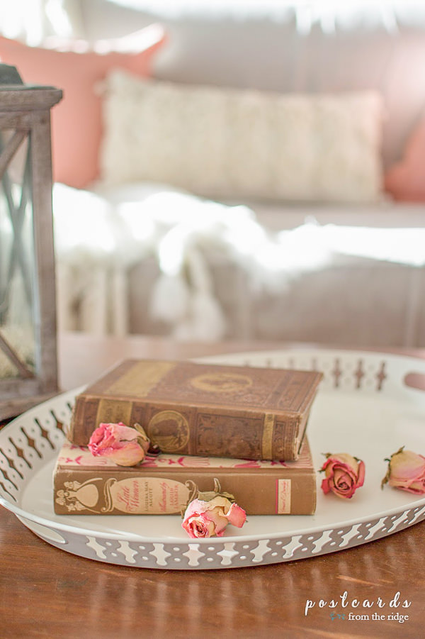 old books and dried roses on an oval white metal tray