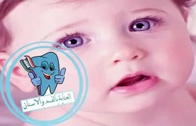 التسنين عند الاطفال, اعراض التسنين, أعراض التسنين عند الرضع, اسنان الاطفال, التسنين, الاسنان اللبنية, عدد اسنان الانسان, اعراض التسنين عند الاطفال, عدد الاسنان, جدول التسنين عند الاطفال, التسنين عند الرضع, تسنين الاطفال, التسنين عند الاطفال الرضع بالصور, اعراض التسنين المبكر, علامات التسنين, الاسنان عند الاطفال, شكل اللثة عند التسنين, ظهور الاسنان عند الاطفال, متى يسنن الطفل, متى يبدأ الطفل بالتسنين, جدول تبديل الاسنان, ترتيب ظهور الاسنان عند الاطفال, تسنين الاطفال الرضع مبكرا, ظهور الاضراس الخلفيه عند الاطفال, اعراض ظهور الضروس عند الاطفال, متى يبدا نمو الاسنان عند الانسان, التسنين المبكر