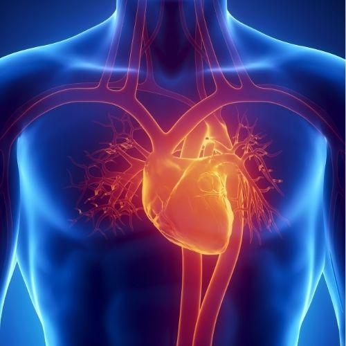 اضطراب عمل القلب مع العلاج