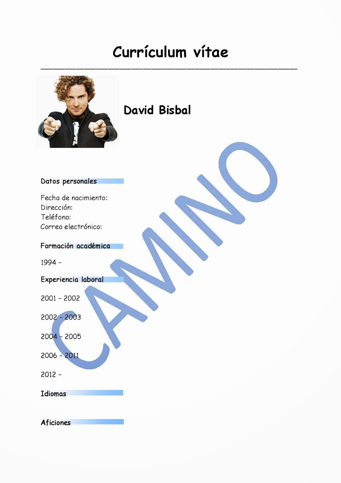 Camino Espanol Curriculum Vitae De David Bisbal A2
