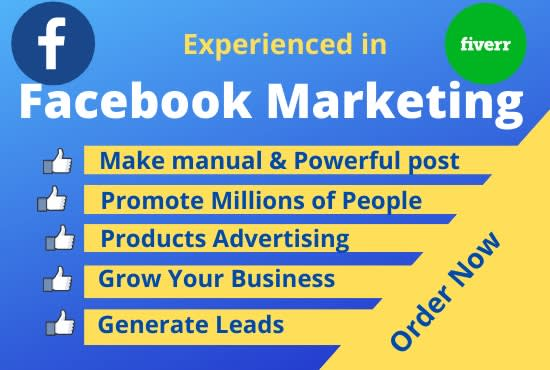 i will do Facebook marketing and create business page