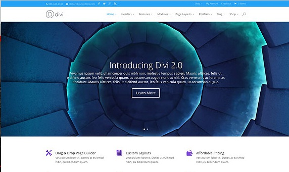Download free WordPress Theme Divi v3 20 2 - 2019 ~ The Gull Place