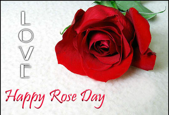 Rose Day Greetings for Lover
