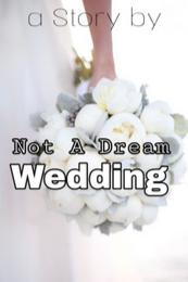 Novel Not A Dreame Wedding Full Episode