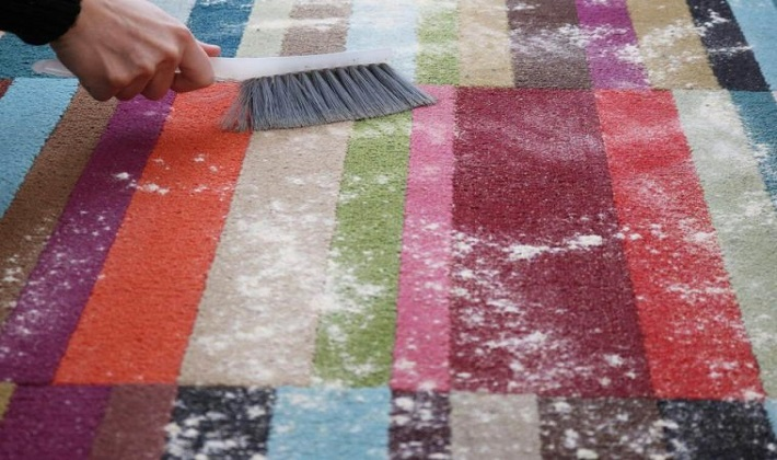 , Why You Should Hire A Professional to Clean Your Pet Stain Carpet? 5 reasons!