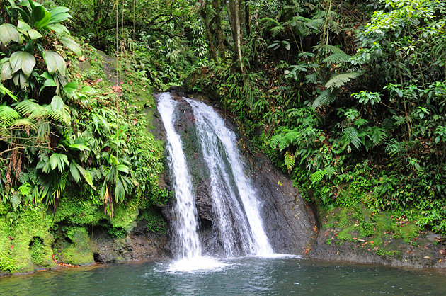 Guadeloupe National Park, Basse-Terre Island