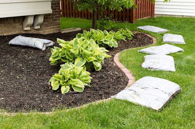 All You Need To Know About Landscaping