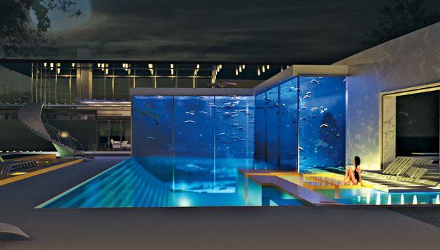 Luxur blog okeanos aquascaping a swimming pool to swim - Acuario en casa ...