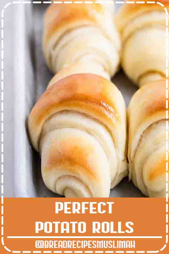 Perfect Potato Rolls