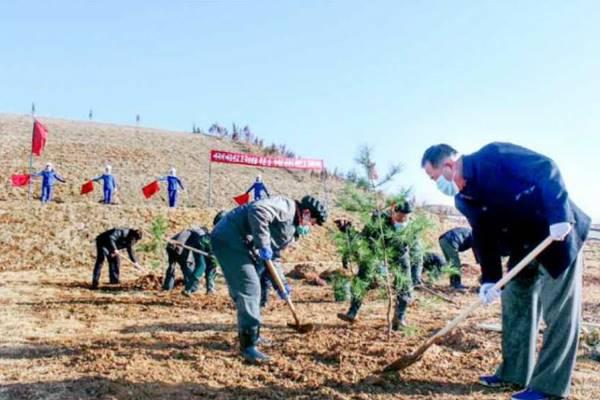 dprk spring tree-planting
