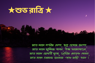 good night image with bengali quotes