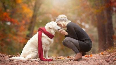 suffering-from-mental-illness-adopt-pet