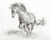 equine artworks, equestrian art, andalusian horse drawing