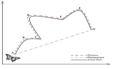 Grade 11 Physics: September 2014