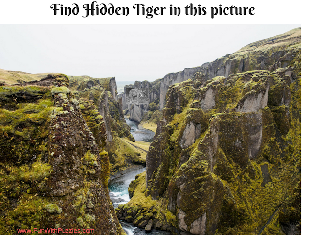 Hidden Tiger Picture Puzzle