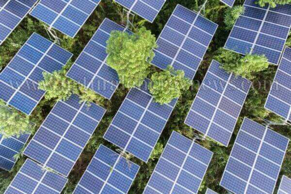 Tender for 6.4 GW solar projects from Andhra Pradesh, overbought by 8.5 GW